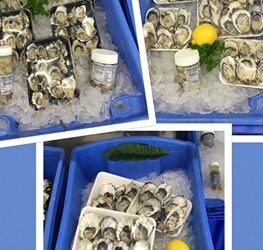 Oysters just opened Sydney rock