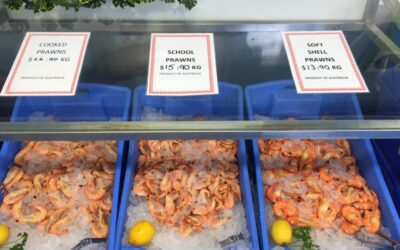 Special deal on our fresh local prawns